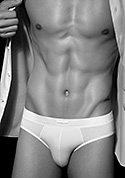 Zegna Micromodal Brief Z20119