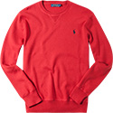Polo Ralph Lauren Pullover A40-SSWCN/C0255/B6K53