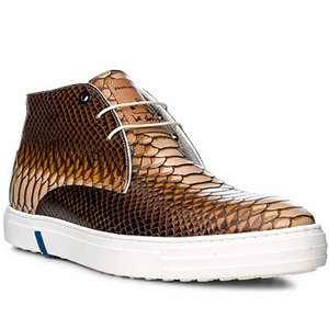 Floris van Bommel Schuhe brown