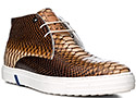 Floris van Bommel Schuhe brown 10941/05
