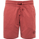 NAPAPIJRI Shorts russet brown N0YGCQR57
