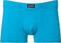 bruno banani Shorts Check Line 2201/1444/2126