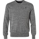Polo Ralph Lauren Pullover grey 710667105002
