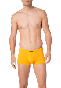 bruno banani Shorts Anti-Stress