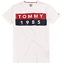 TOMMY JEANS T-Shirt DM0DM03715/100
