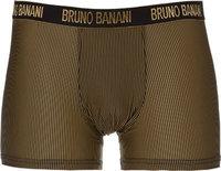 bruno banani Shorts Rays