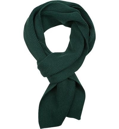 Polo Ralph Lauren Schal : Polo Ralph Lauren Schal  Herren in grün aus Merinowolle