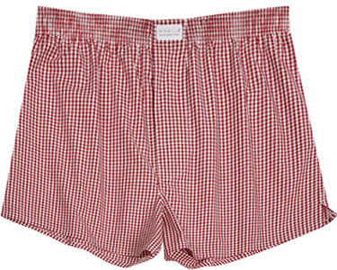 Novila Shorts 8580/55/219
