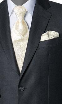 Wilvorst Krawattenplastron ecru